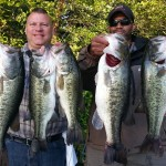 Lake anna fishing report lake anna rentals for Lake anna fishing